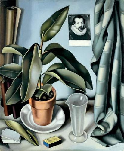 Still Life with a Rubber Plant