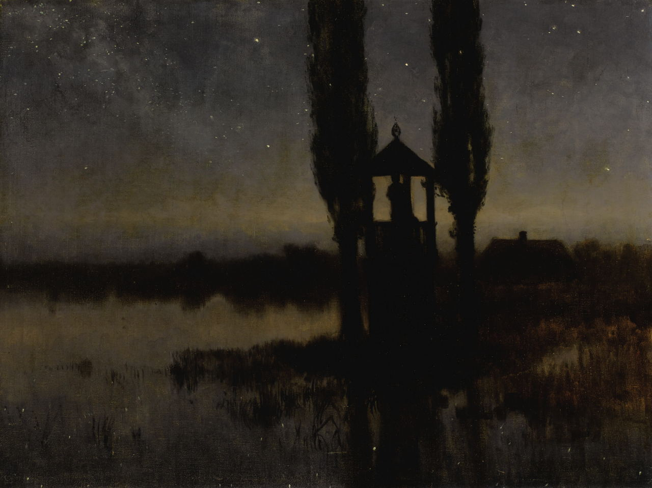 Nocturnal Marshland