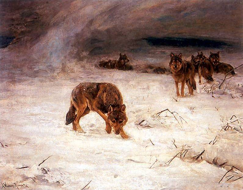Wolves in a Snowstorm