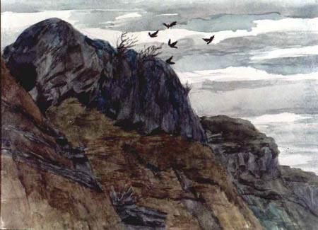 Crows above a Cliff