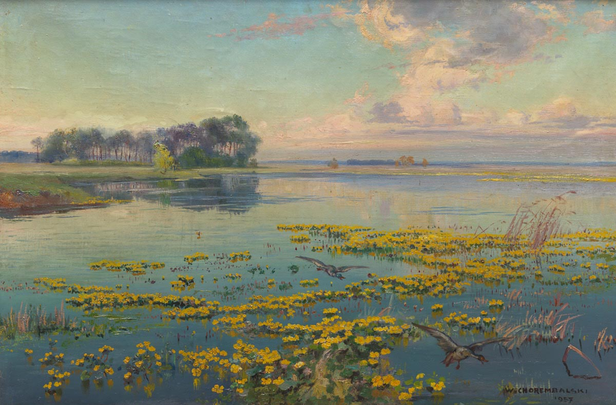 River with Yellow Water Lilies