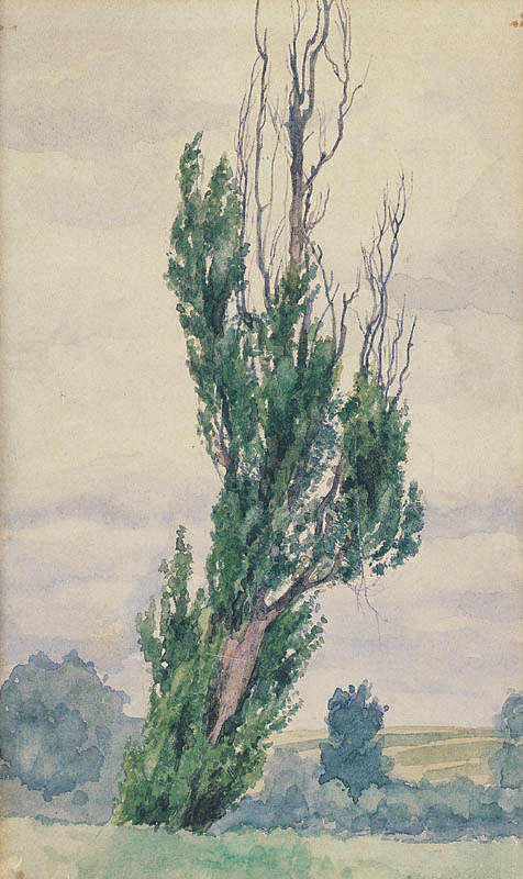 Landscape with a Poplar Tree