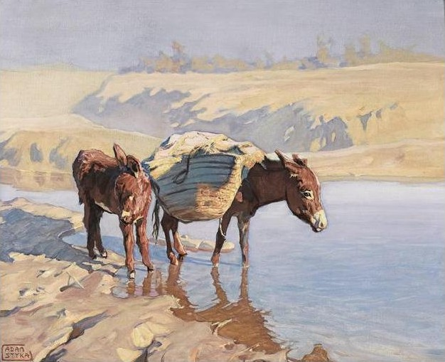 Donkeys by the River