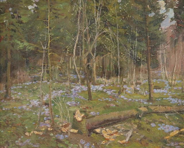 Forest in the Springtime